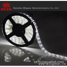 Luz de tira impermeable del LED SMD5050 LED Strip